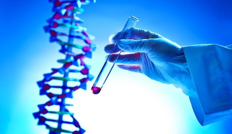 Nutrizione E Genetica Test DNA